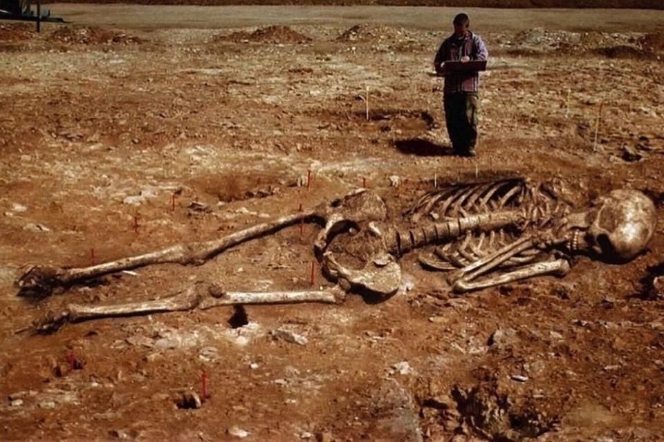 Энтузиасты верят, что на Земле когда-то жили племена гигантов, доказательства существования которых ученые намеренно уничтожают вот уже более сотни лет.