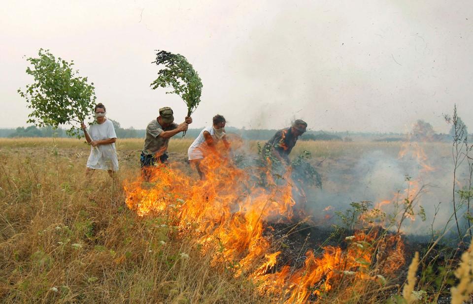 В 2010 году распространение пожаров помогли остановить группы добровольцев: фото пресс-службы поселка Сойга