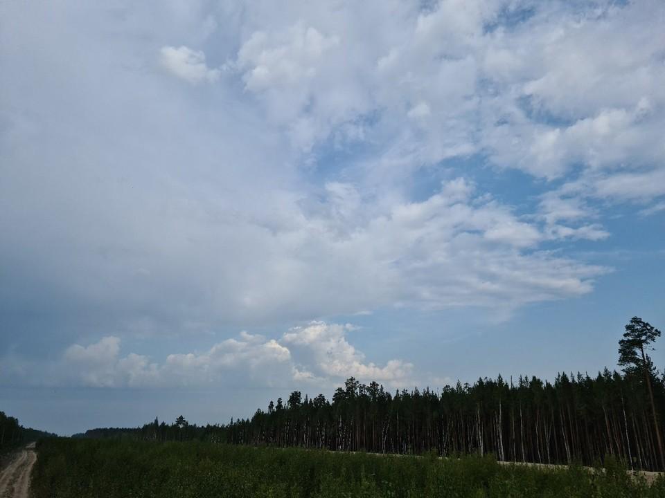 Погода в Югре на 3 сентября 2021 года: небольшой дождь