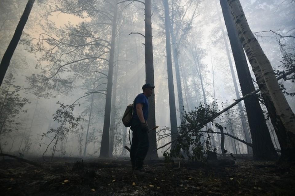 На территории РК объявлена высокая пожарная опасность с 8 по 12 сентября