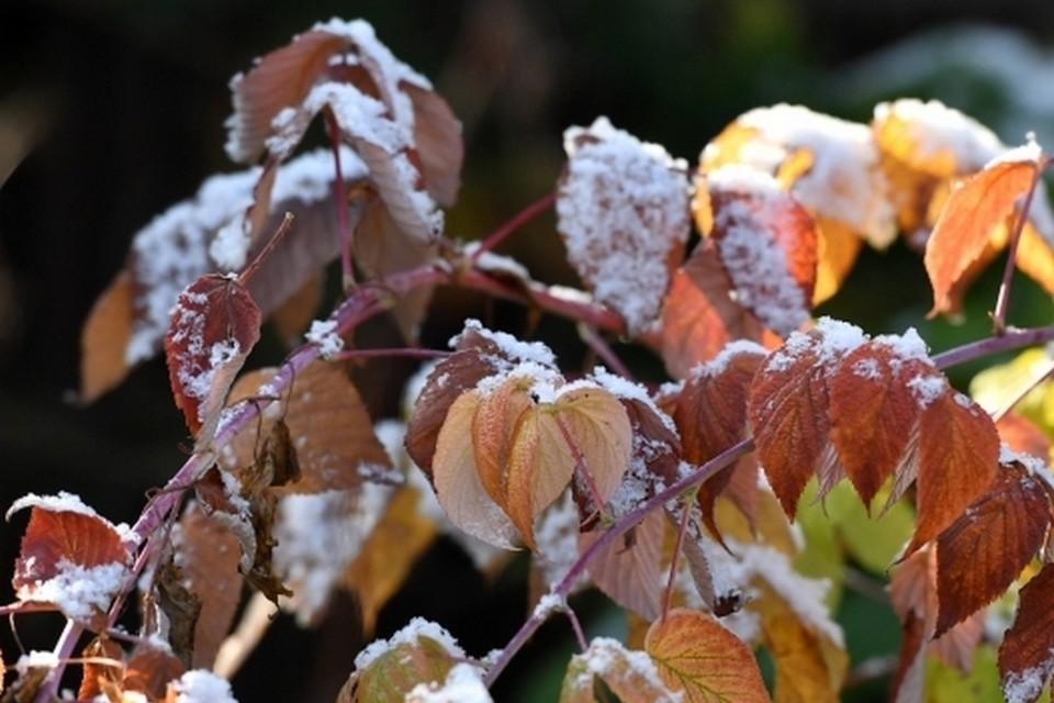 В ночь с субботы на воскресенье температура воздуха в Башкирии может упасть до -5 градусов