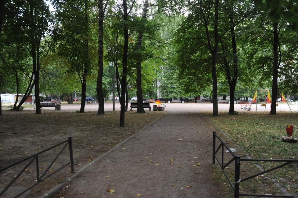 Петербургские сады и парки закрыли 13 сентября из-за шторма