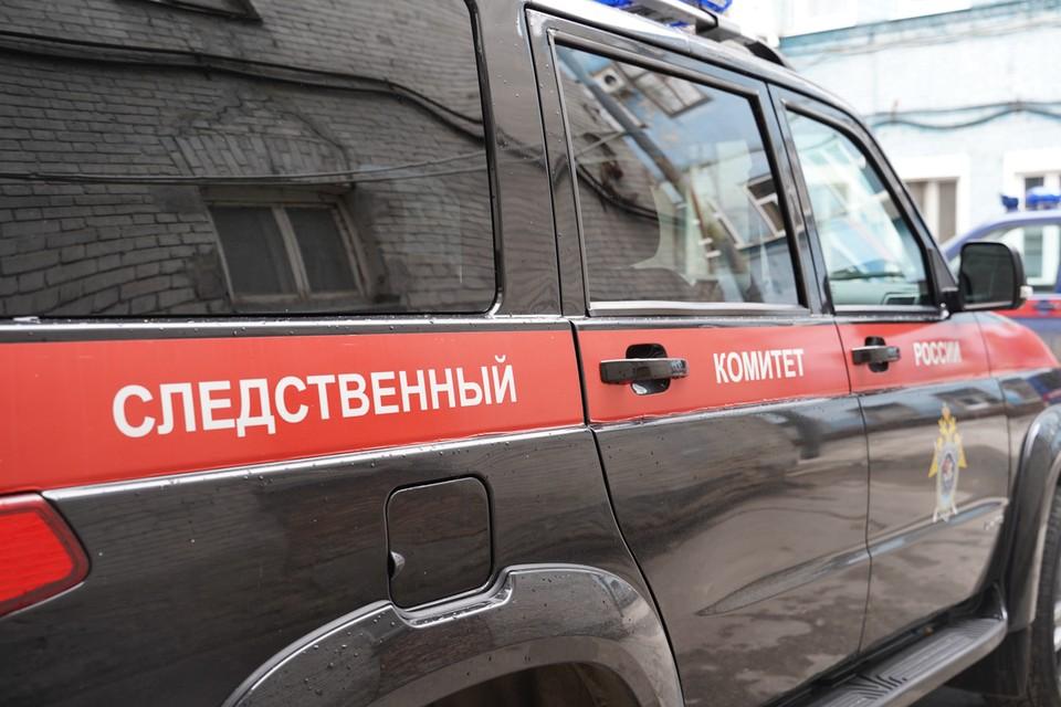 Следователи разбираются в причинах убийства в Самарской области